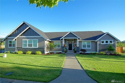 Buckley Single Family Home For Sale: 1507 Ryan Rd