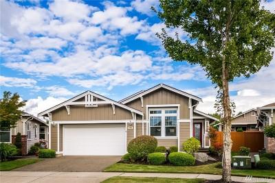 Thurston County Single Family Home For Sale: 4204 Sentinel Dr NE