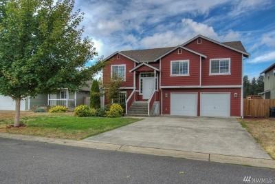 Thurston County Single Family Home For Sale: 10705 Umtanum St SE