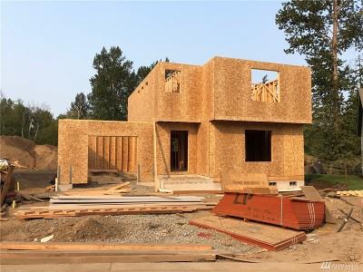 Bellingham Single Family Home For Sale: 4337 Indigo Lane #30