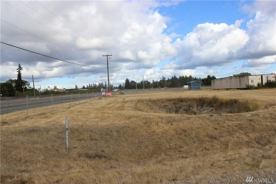 Rochester WA Residential Lots & Land For Sale: $89,900