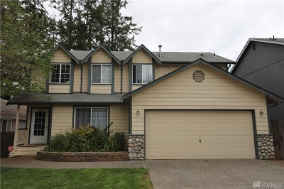 Spanaway Single Family Home For Sale: 4033 230th St Ct E