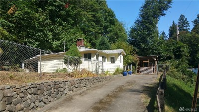 Port Orchard Single Family Home For Sale: 1048 Arnold Ave E