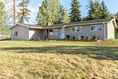 Bellingham Single Family Home For Sale: 2297 Mt Baker Hwy