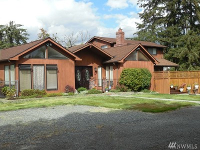 Lake Stevens Single Family Home For Sale: 219 81st Ave NE