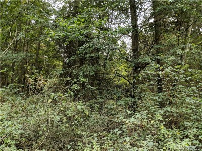 Oak Harbor Residential Lots & Land For Sale: E Piper Trail