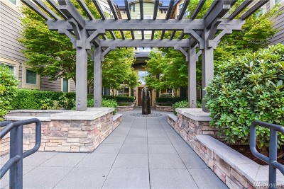 Bothell Condo/Townhouse For Sale: 15700 116th Ave NE #104