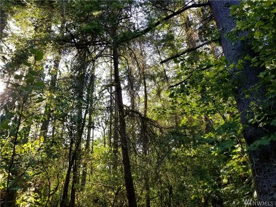 Olympia, Tumwater, Lacey Residential Lots & Land For Sale: 13825 Reeder Rd SW