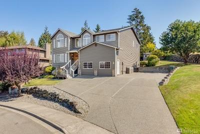 Everett Single Family Home For Sale: 2423 Viewcrest Ave
