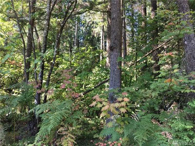 Maple Falls WA Residential Lots & Land For Sale: $35,000