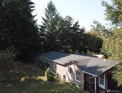 Tenino Single Family Home For Sale: 2910 143rd Ave SE