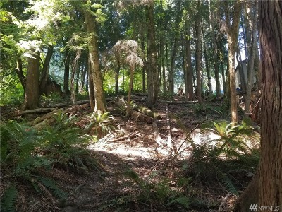 Sedro Woolley WA Residential Lots & Land For Sale: $3,876