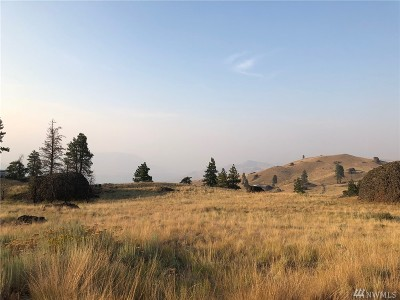 Chelan, Chelan Falls, Entiat, Manson, Brewster, Bridgeport, Orondo Residential Lots & Land For Sale: McNeil Canyon Rd.