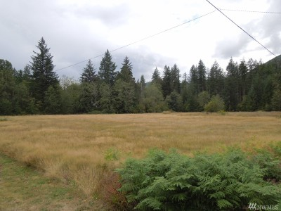 Deming Residential Lots & Land For Sale: 6483 Mt Baker Hwy