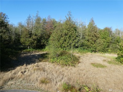 Residential Lots & Land For Sale: Seaview Lane