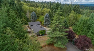 Chehalis Single Family Home For Sale: 264 Penning Rd