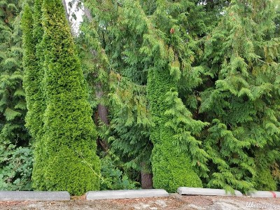 Sammamish Residential Lots & Land For Sale: 15xx 207th Ave NE