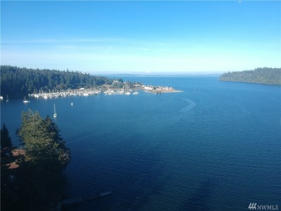 Port Ludlow Single Family Home For Sale: 340 Bay Lane