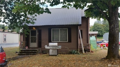 Winlock Single Family Home For Sale: 1102 NW Mill Ave