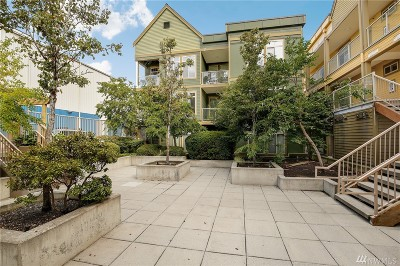 Bellingham Condo/Townhouse For Sale: 910 Gladstone St #209