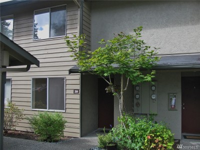 Issaquah Condo/Townhouse For Sale: 220 Newport Wy NW #E39