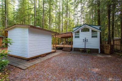 Deming Single Family Home For Sale: 182 Big River Blvd E
