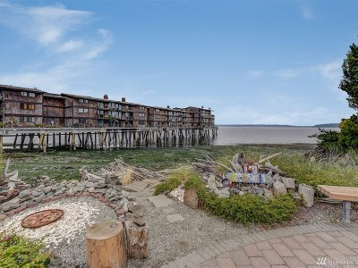 Seattle Condo/Townhouse Sold: 3717 Beach Dr SW #309