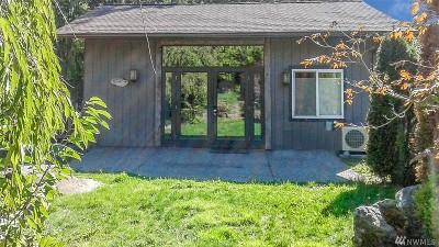 Mason County Single Family Home For Sale: 211 W Alder St