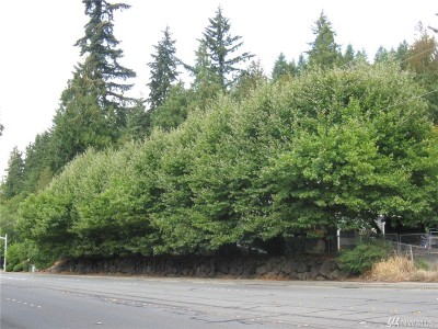 Residential Lots & Land For Sale: 5106 E Lake Sammamish Pkwy SE