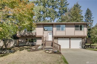 Kirkland Single Family Home For Sale: 9100 NE 141st St