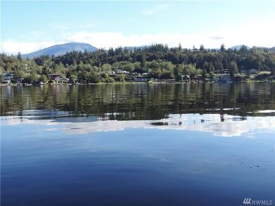 Residential Lots & Land For Sale: W Big Lake Blvd