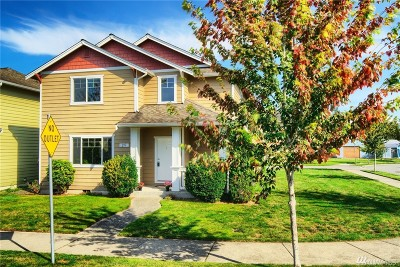 Sedro Woolley Single Family Home For Sale: 297 Lewis Place