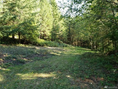 Residential Lots & Land For Sale: 293 Chehalis Valley Dr