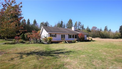 Whatcom County Single Family Home For Sale: 5425 Papetti Lane