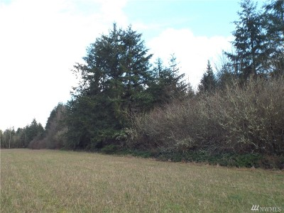 Residential Lots & Land For Sale: 1166 Rush Rd