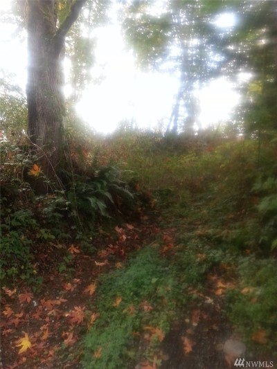 Snohomish WA Residential Lots & Land Sold: $17,000