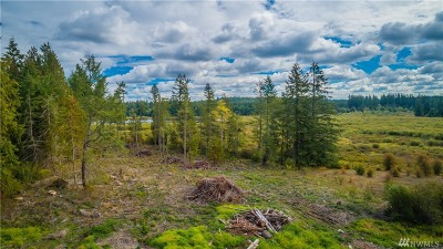Olympia, Tumwater, Lacey Residential Lots & Land For Sale: 11705 Whitehall Lane SE