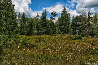 Snohomish Residential Lots & Land For Sale: Three Lakes Rd