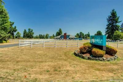Tukwila Single Family Home For Sale: 13802 Military Rd S