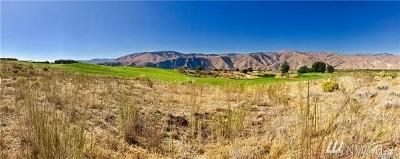 Chelan, Chelan Falls, Entiat, Manson, Brewster, Bridgeport, Orondo Residential Lots & Land For Sale: 200 Desert Canyon Rd