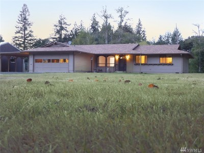Chehalis Single Family Home For Sale: 3956 Highway 6