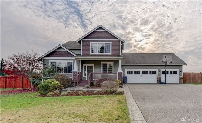 Port Orchard Single Family Home For Sale: 9675 Phillips Rd SE