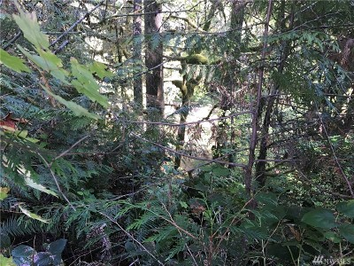 Residential Lots & Land For Sale: 1370 W Satsop Maple Glen Rd