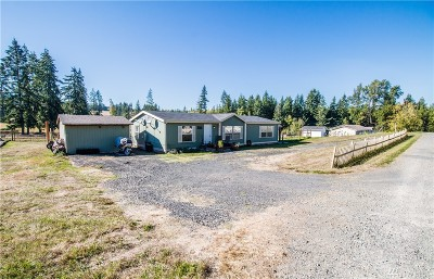 Winlock Single Family Home For Sale: 100 Draws Lane