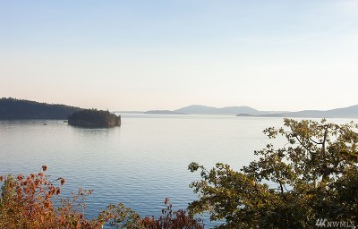 Bellingham WA Residential Lots & Land For Sale: $700,000