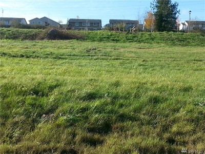 Skagit County Residential Lots & Land For Sale: 1483 W Gateway Heights Loop