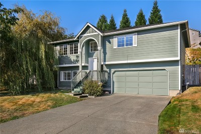 Stanwood Single Family Home For Sale: 7865 262nd St NW