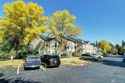 Snohomish County Condo/Townhouse Pending: 12303 Harbour Pointe Blvd #S206