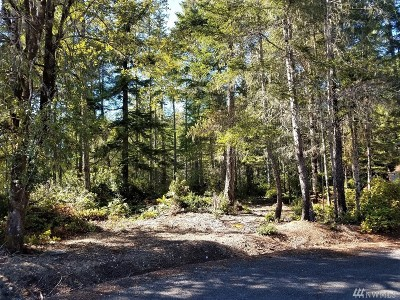 Mason County Residential Lots & Land For Sale: 220 E Blackberry Lane