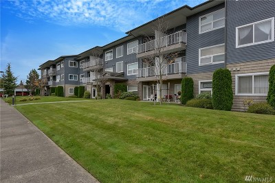 Bellingham Condo/Townhouse For Sale: 516 Darby Dr #212